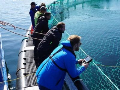 Icelandic Salmon Net Repairs | The Importance of ROV Inspections